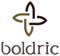 Boldric Logo