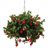 "22"" Artificial Red Fuchsias Ball"